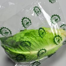 "12x9.75x4 BG Produce Bags, Vented, Printed ""Eat 5 A Day\"""